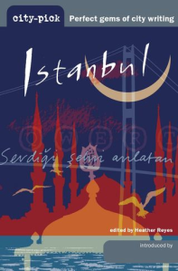 cover of Istanbul guide with cresent and minarets