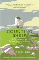 Counting Sheep