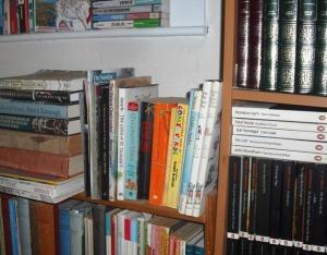A Small Book Shelf