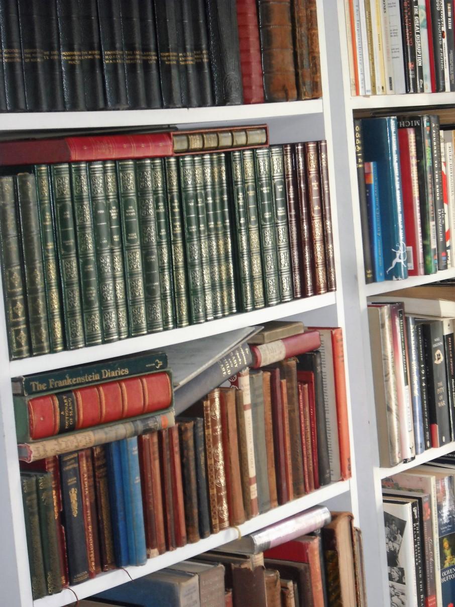 Bookshelves in Situ